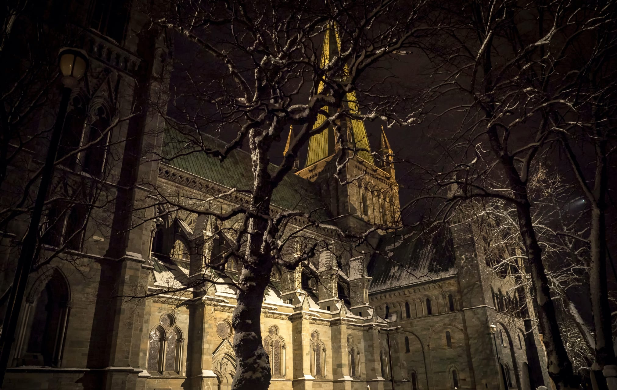 Trondheim - Trondheim at Night: The Cathedral, the Legends and the City