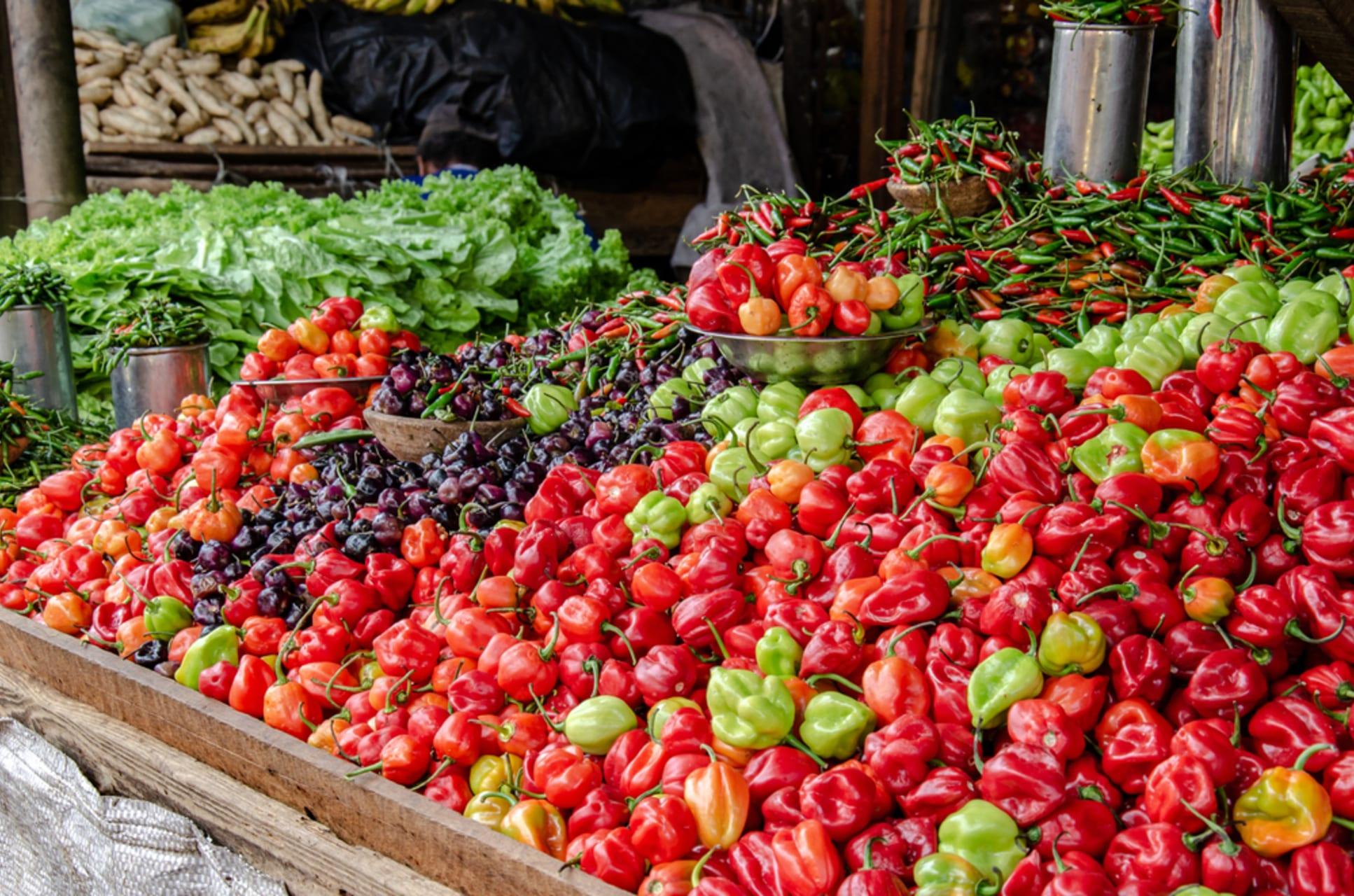 Salvador Bahia - Brazil Grand Tour - Food Experience in Bahia