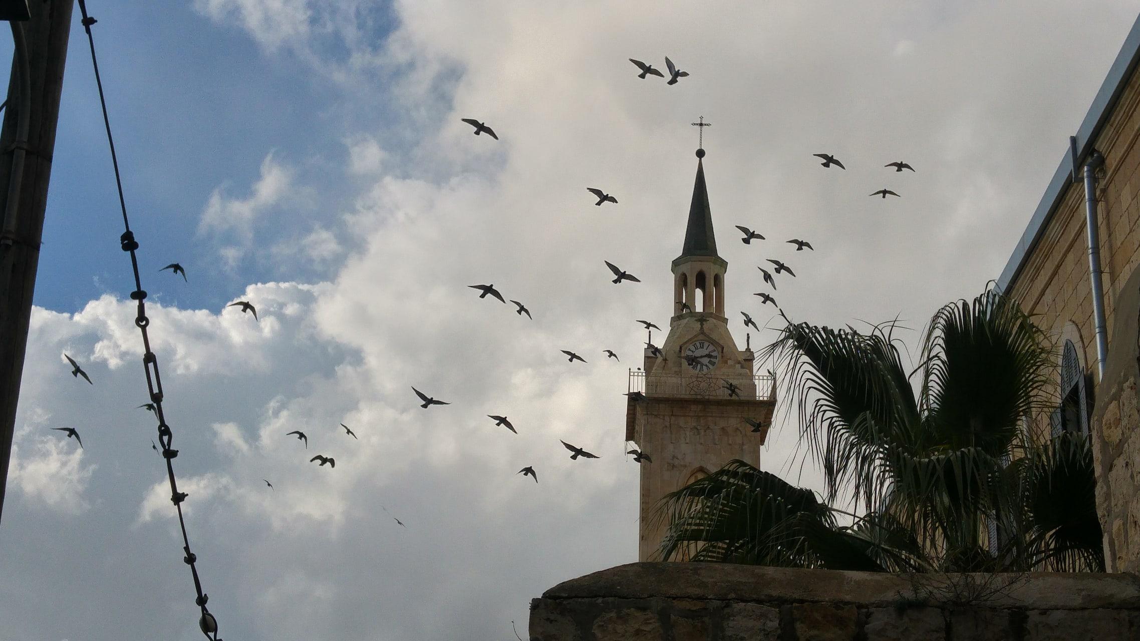 Jerusalem - Ein Karem - The Village of John the Baptist and the Home of Brave Women