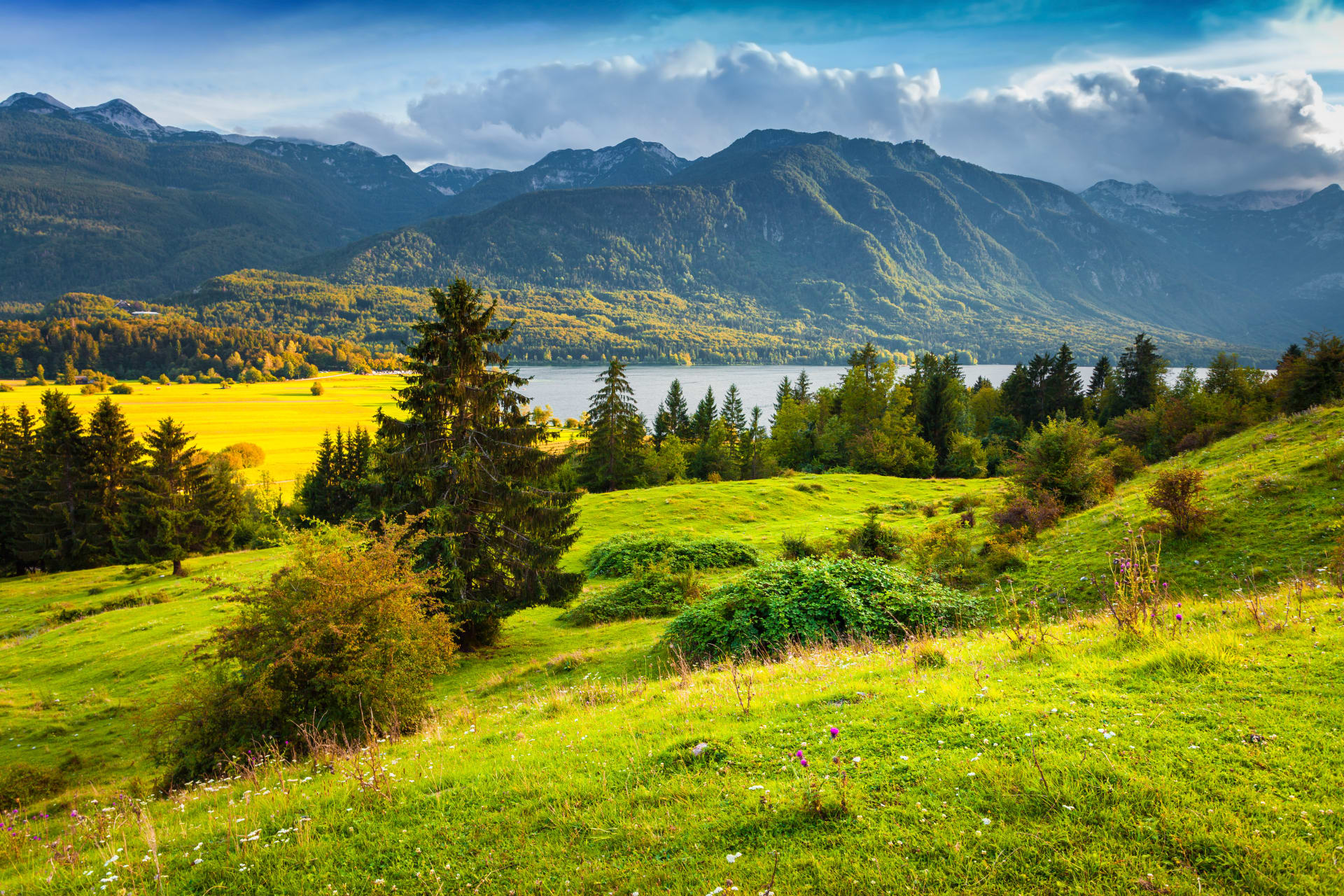 """Bohinj - """"An early-morning walk is a blessing for the whole day"""" – Henry David Thoreau"""