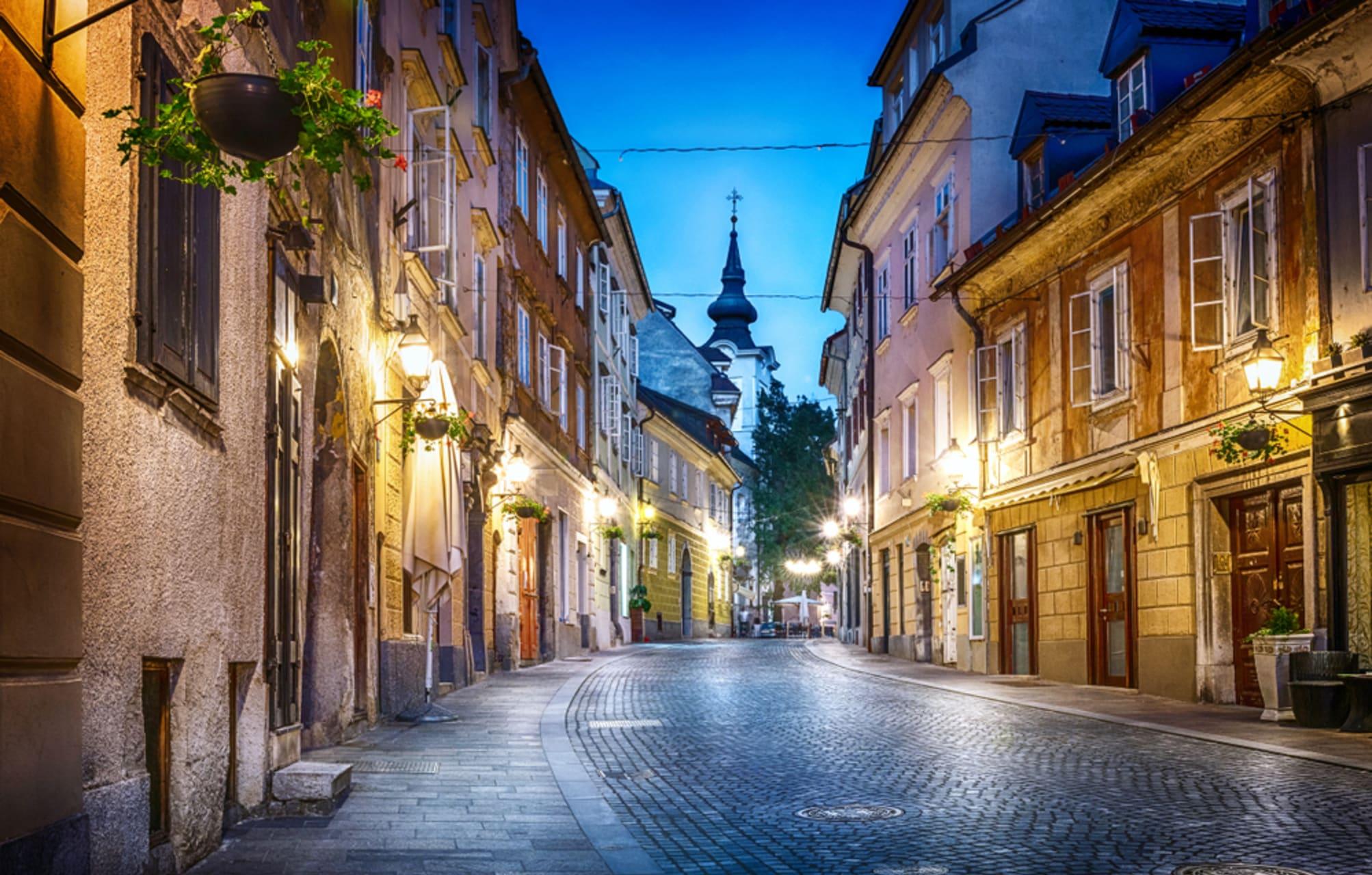 Ljubljana - The Oldest Part of the City - Artists Inspiration