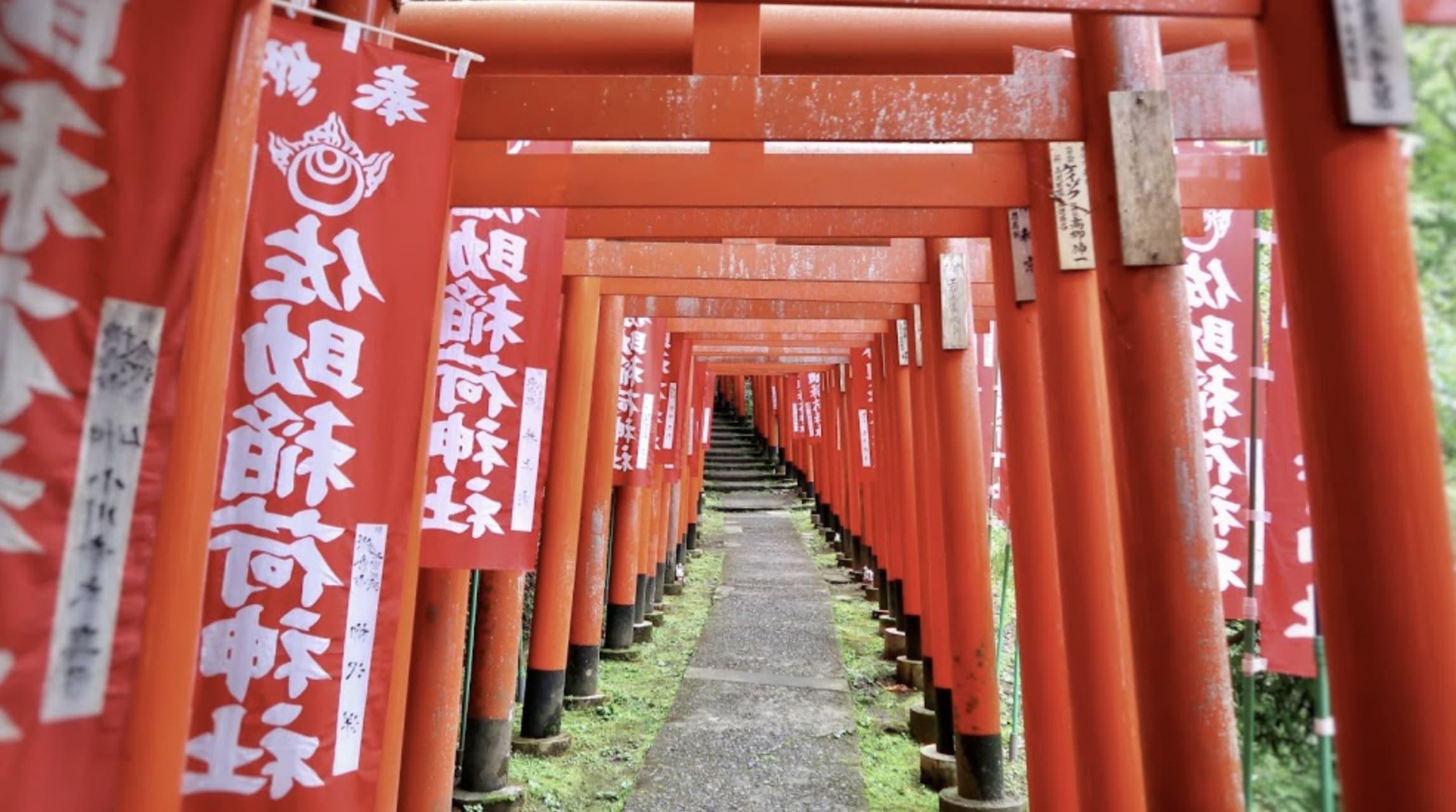 Kanagawa - Red Tunnels of Gratitude at Inari Shrine, Japan
