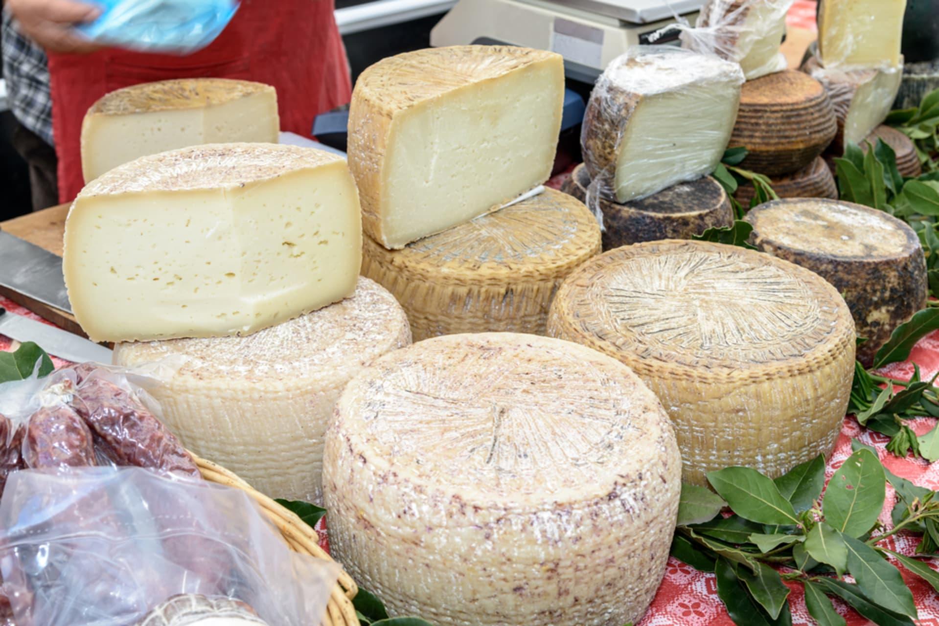 Sardinia - The Art of Making Pecorino Cheese, Close Encounter with the Sardinian Sheep