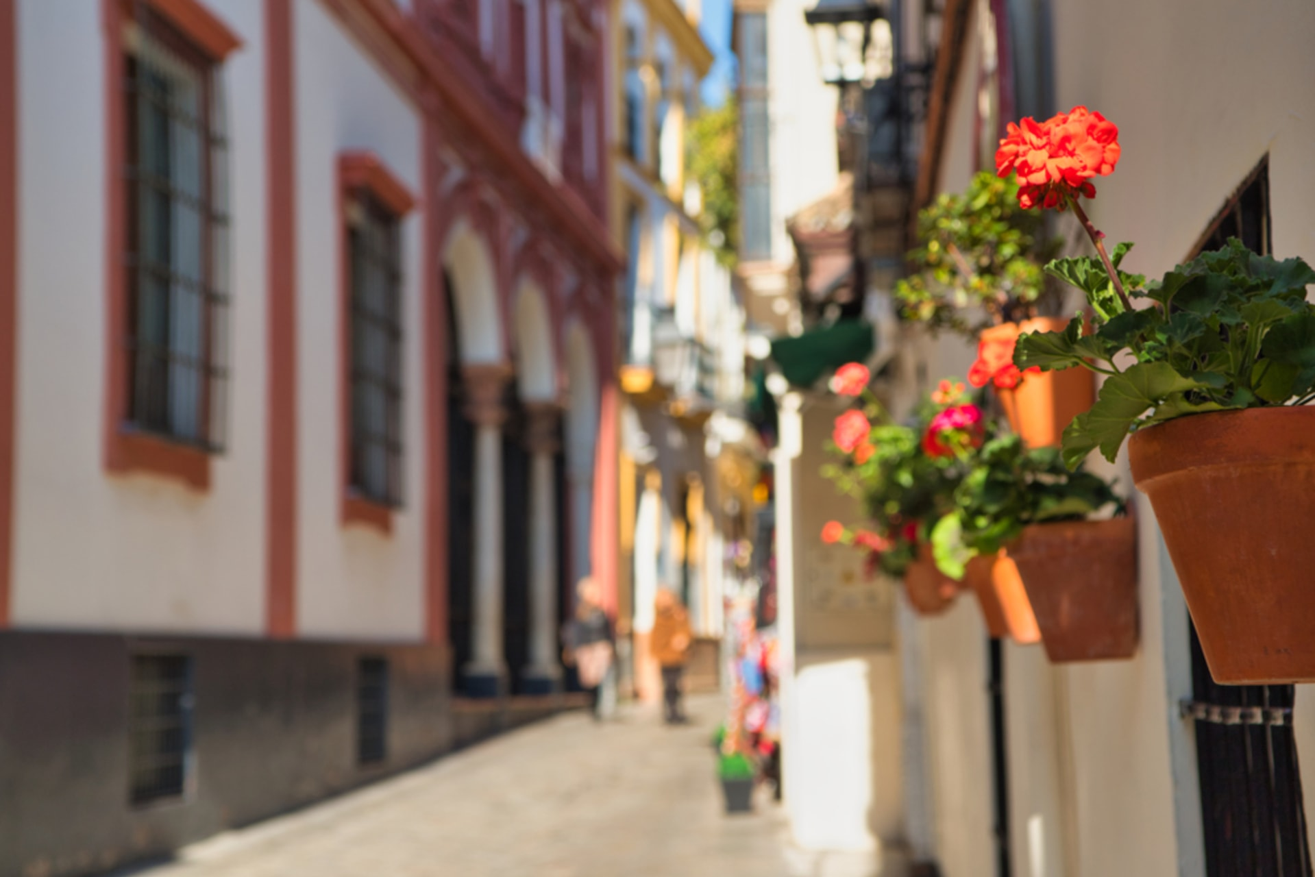 Seville - Romantic Seville: Love Stories and Passionate Tales