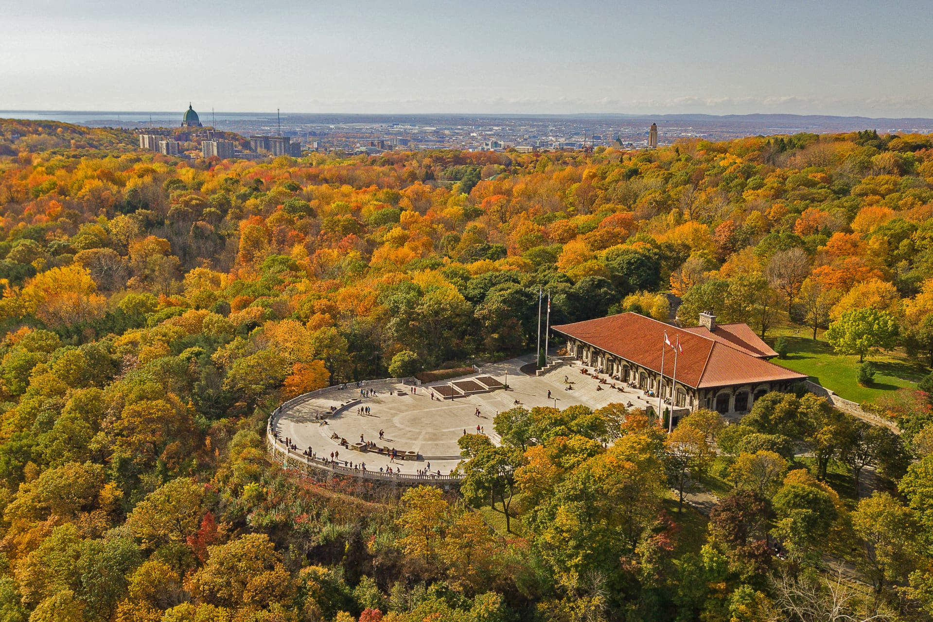 Montreal - Montreal's Scenic Panorama discovery