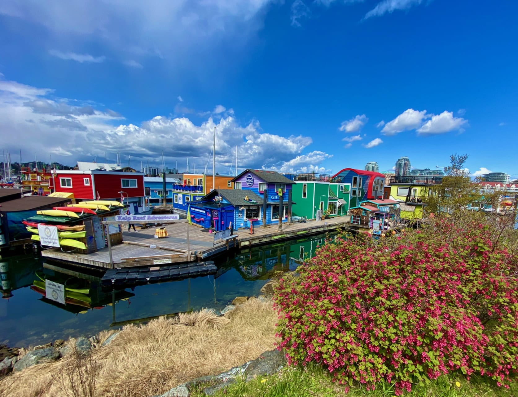 Victoria, BC - Fisherman's Wharf to Victoria's Inner Harbour by Boat or Trail