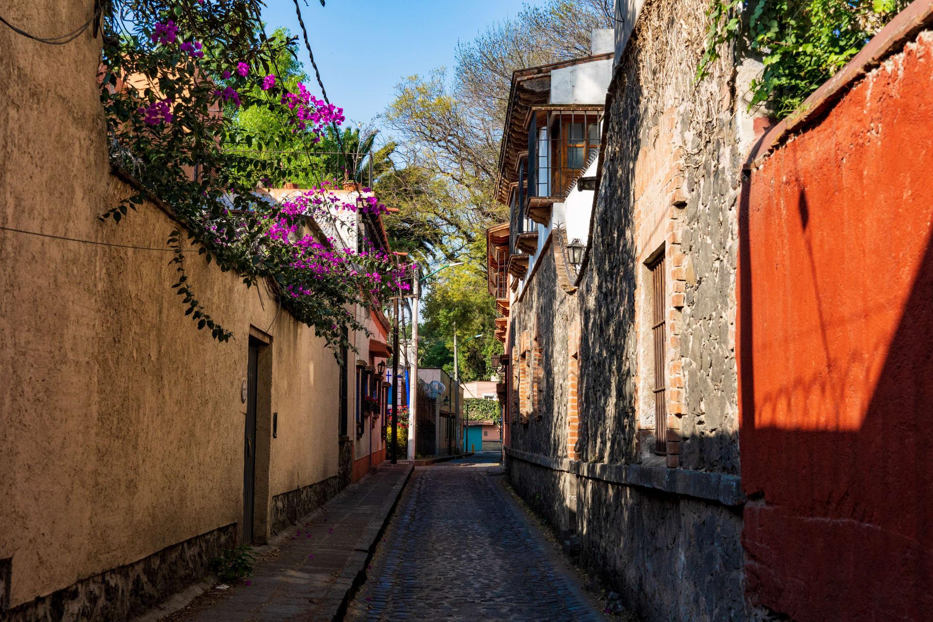 Mexico City - A Colombiana Visiting México - Coyoacán The Bohemian Neighborhood