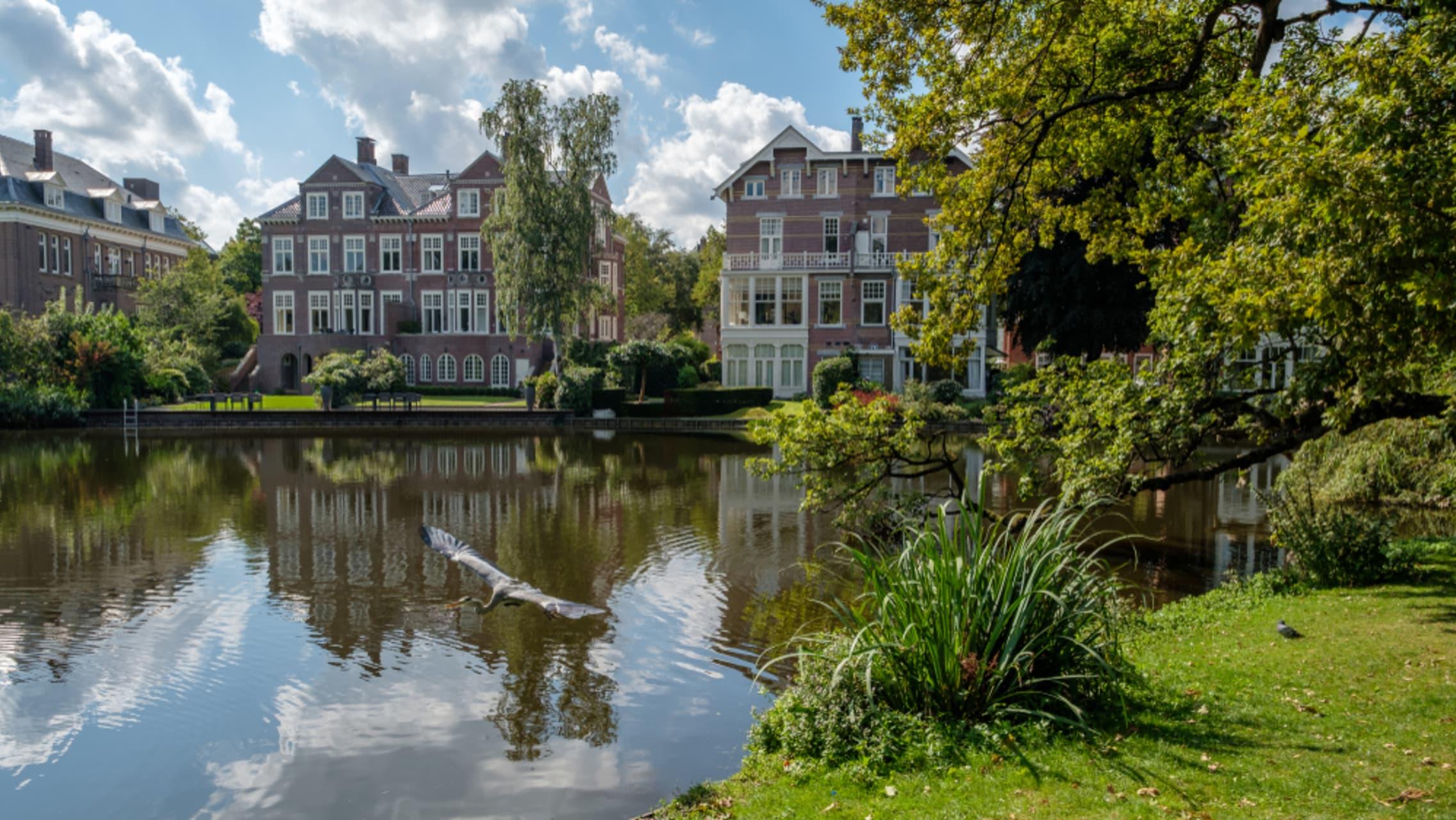 Amsterdam - Leidseplein and Vondelpark: Freedom and Culture