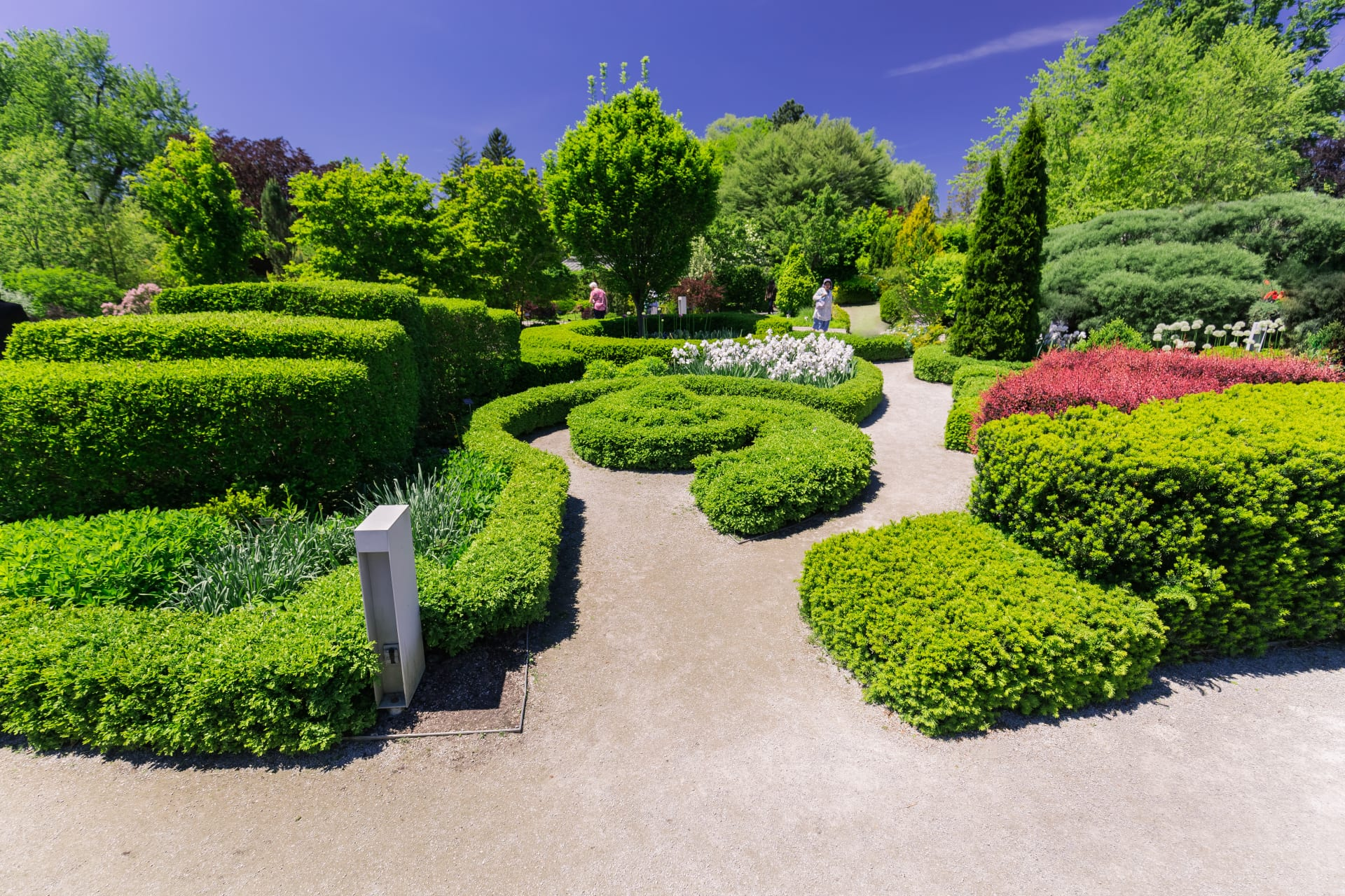 Greater Toronto Area - Hedge Design and Plants at the Toronto Botanical Garden