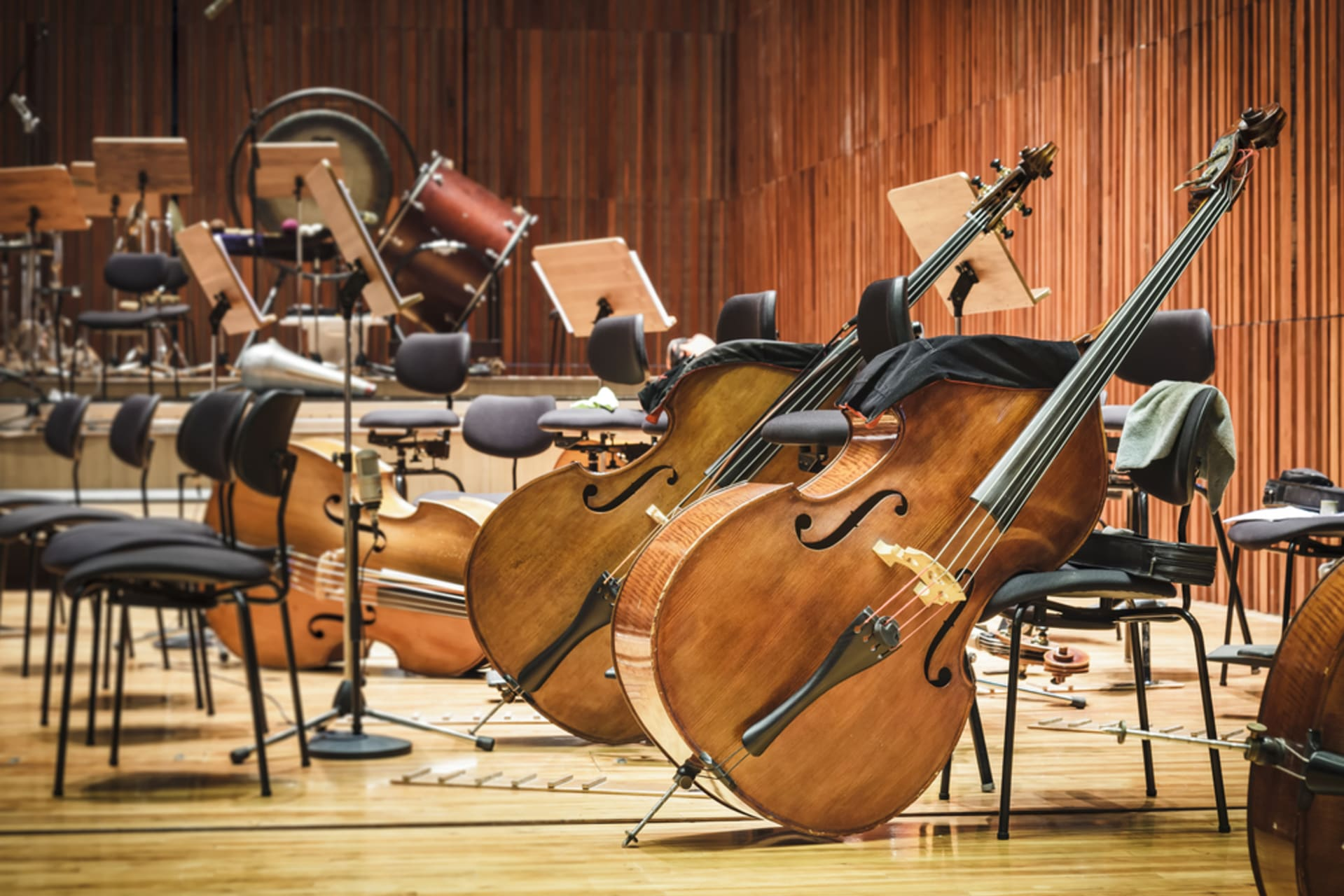 Porto - Let's indulge with Classical Music!