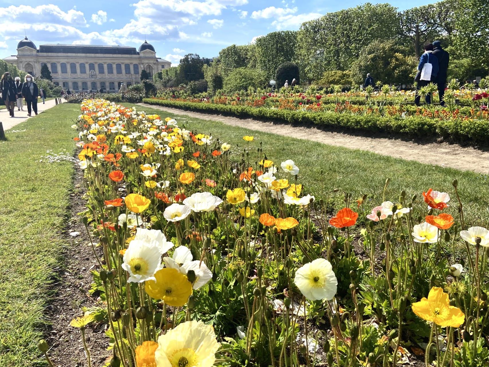 Paris - The Botanical Garden of Paris