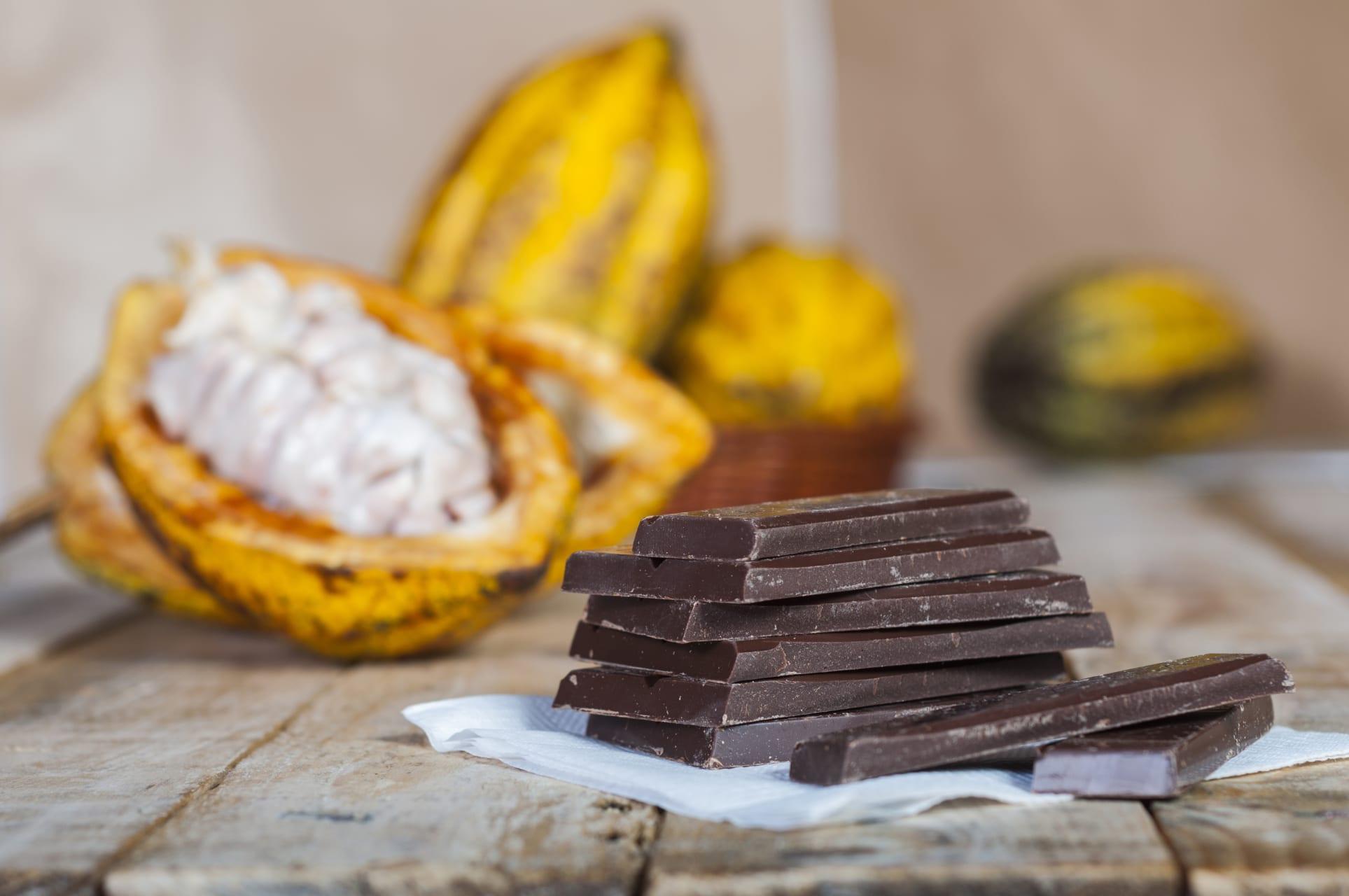 Mindo - Artisan Chocolate Tour Cacao de Fino Aroma