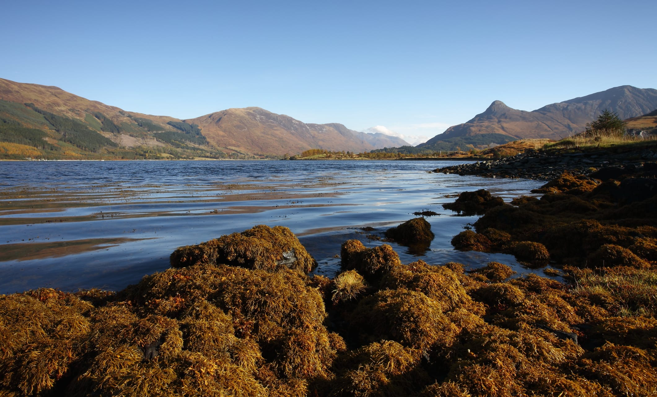 The Scottish Highlands - The Shores of Loch Leven