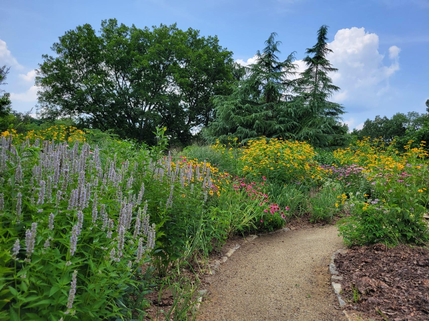 Philadelphia - Historic Philadelphia Cemetery and Arboretum