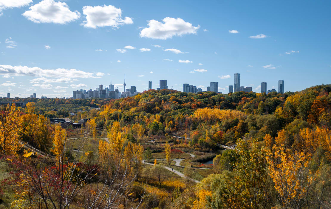 Greater Toronto Area - Experience Nature in the City at Evergreen Brickworks