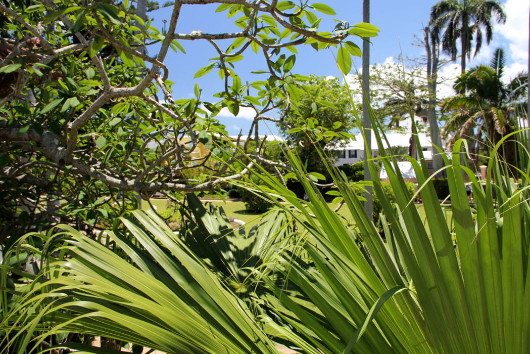Bermuda - John Lennon's Bermuda Inspiration