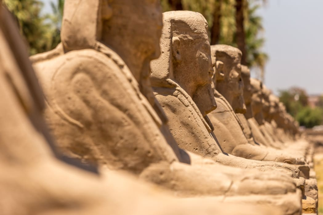 Luxor - A walk of Sphinxes avenue