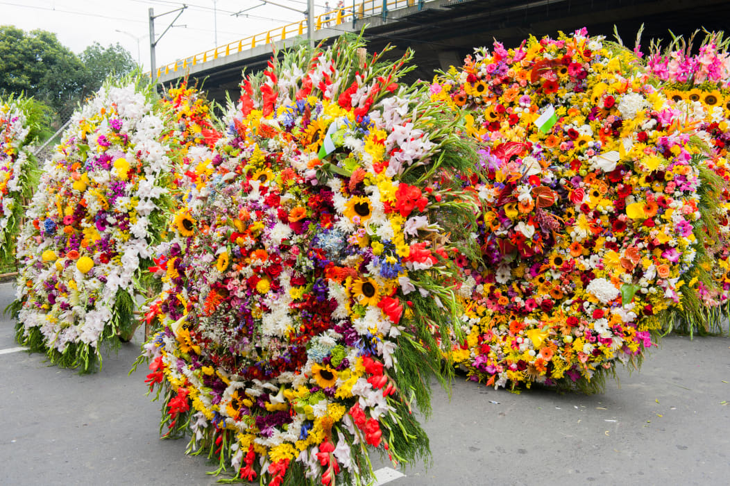 Medellín - Flower Parade Silleteros