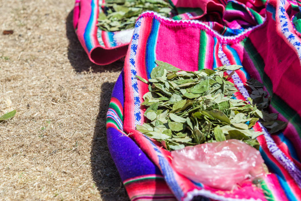 Arequipa - Coca leaves in the  local Market