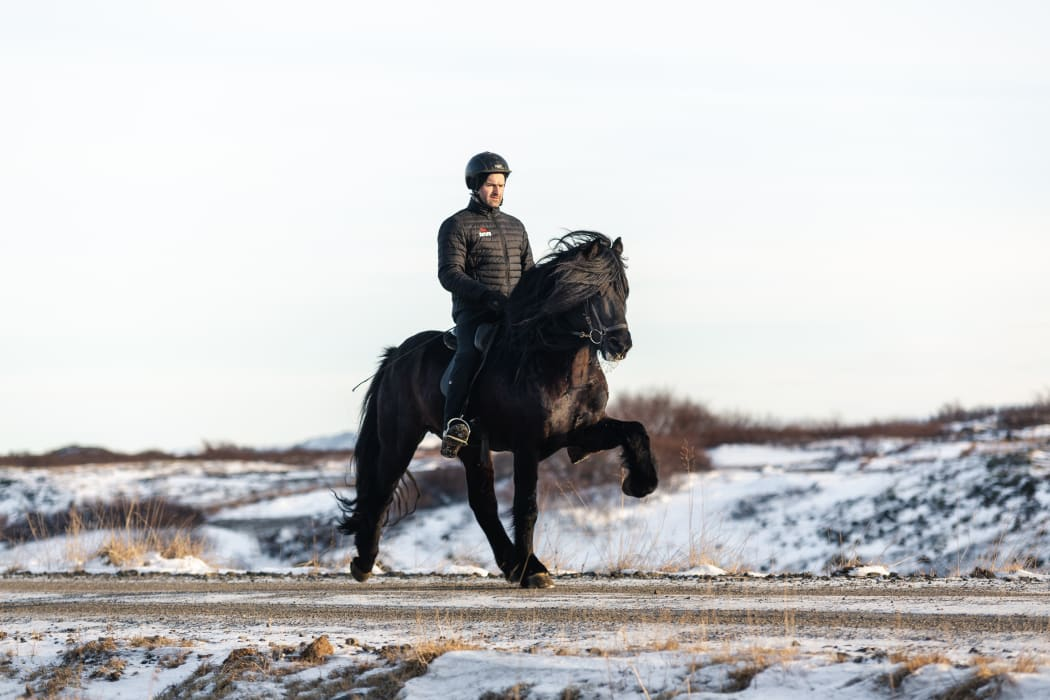West Iceland - Icelandic horses at their finest with top rider