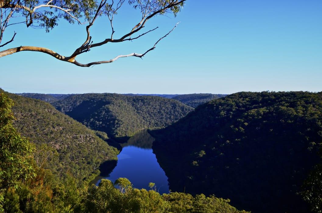 Sydney - Explore the Australian Wilderness