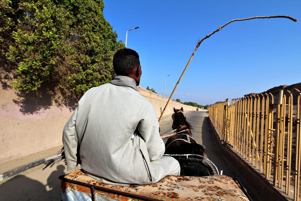 Luxor - Luxor City By Horse Drawn Carriage