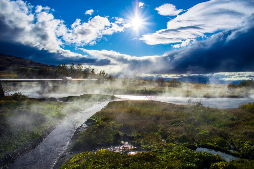 West Iceland - Voluminous Hotspring and Endemic Plant at Deildartunguhver