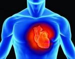 Учені з Великобританії встановили, що у 80% населення серце старше, ніж їх фактичний вік