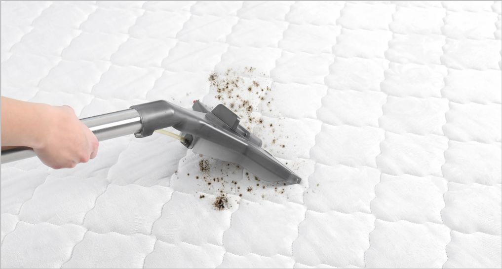 A hand vacuuming dirt off a mattress