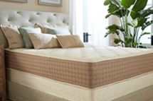 Eco Terra Latex Mattress reviews