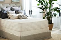 PlushBeds Luxury Bliss Mattress reviews