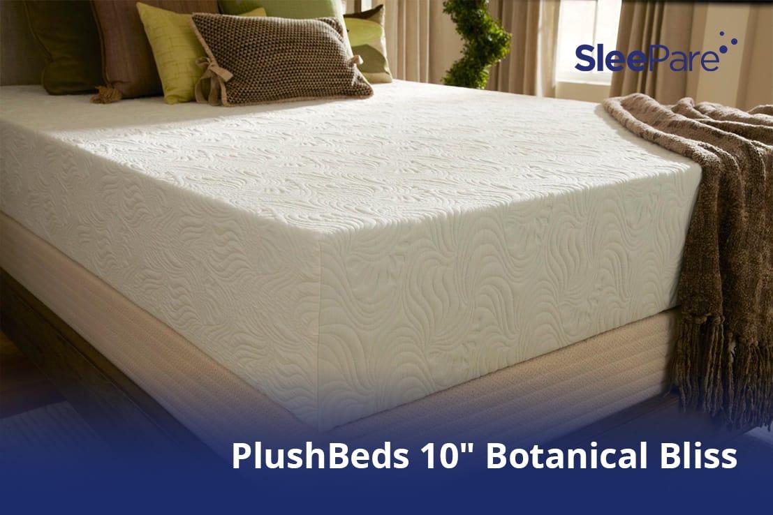 Plushbeds 10 Botanical Bliss Vs Sleep Ez Lifetime Dreams Organic