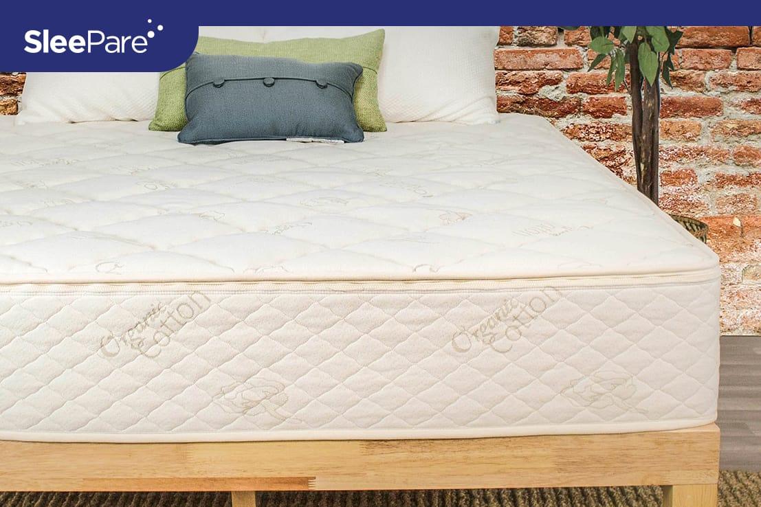 Sleep EZ Lifetime Dreams Organic Latex