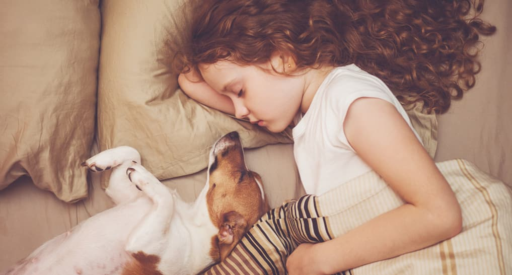 Child sleeping with a dog