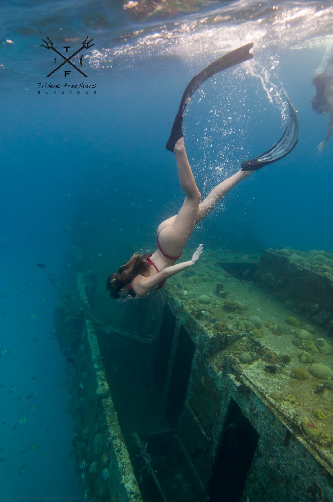Underwater picture by Trident Freedivers. Available for purchase.