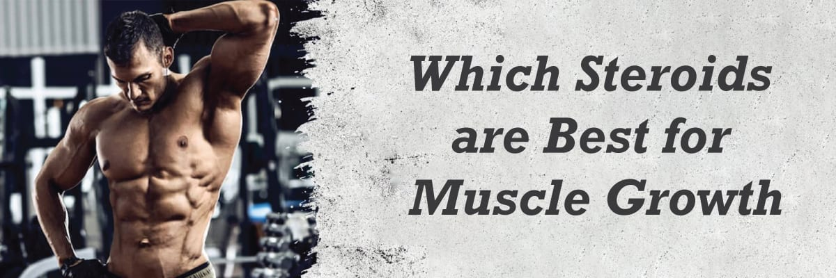 Which steroids are best for muscle Growth?