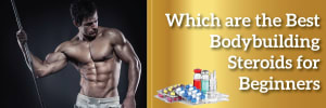 Which are the best bodybuilding steroids for beginners