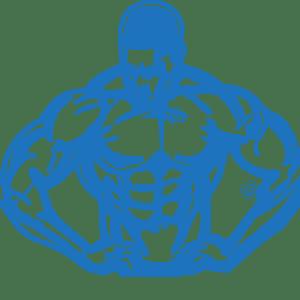 Steroid Beginner Cycle