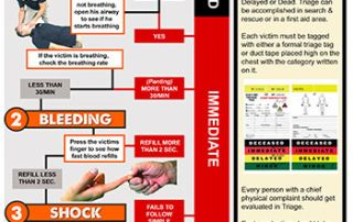 Disaster Response Triage Guide (with Poster)