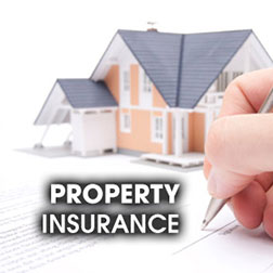 National-Preparedness-Property-Insurance