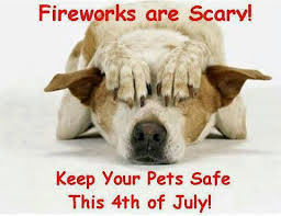 Pet Safety-Fourth of July
