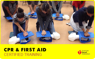 CPR Training 3