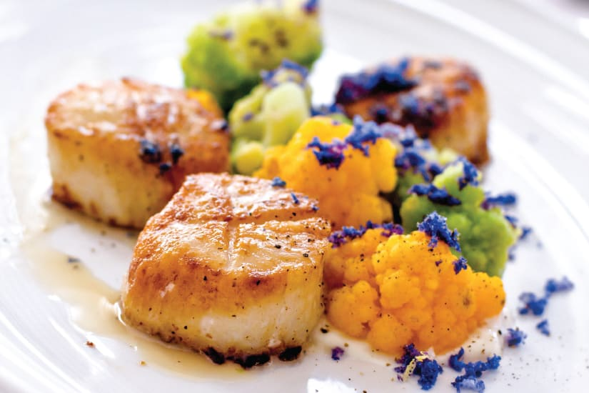 fried scallops served on plate
