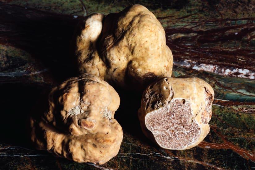 three truffles on a dark background