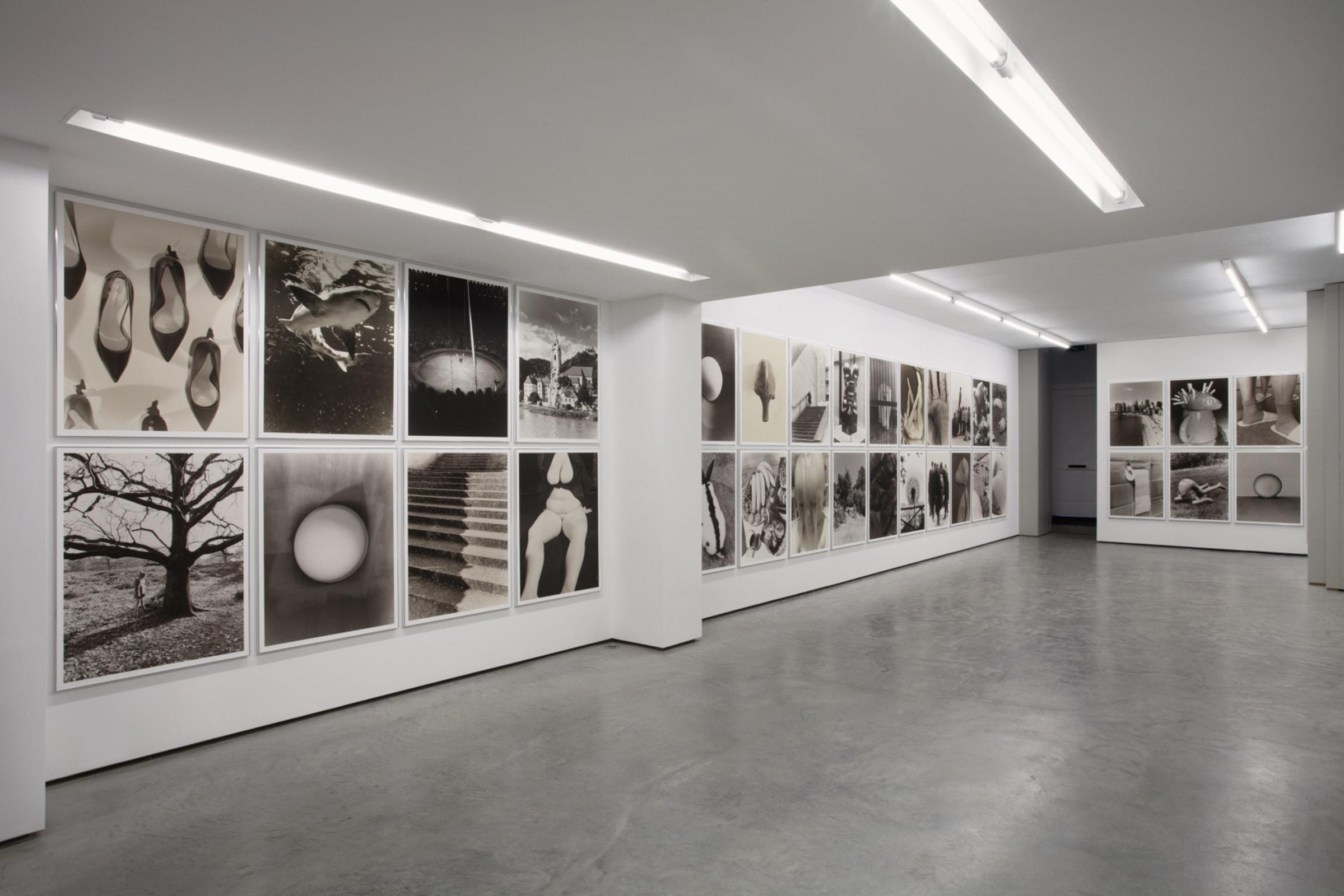 Eggs and Rarities, Paul Kooiker,