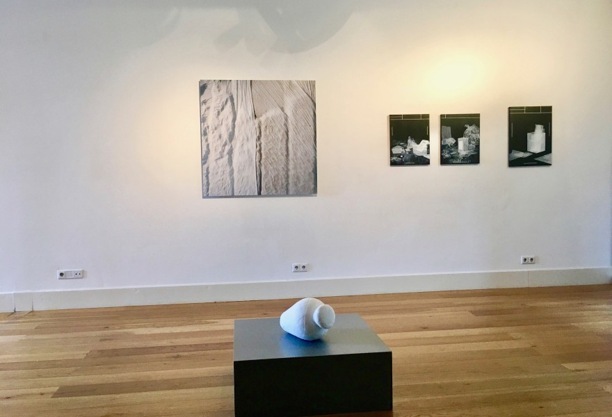 Continuous Diversity at galerie Helder