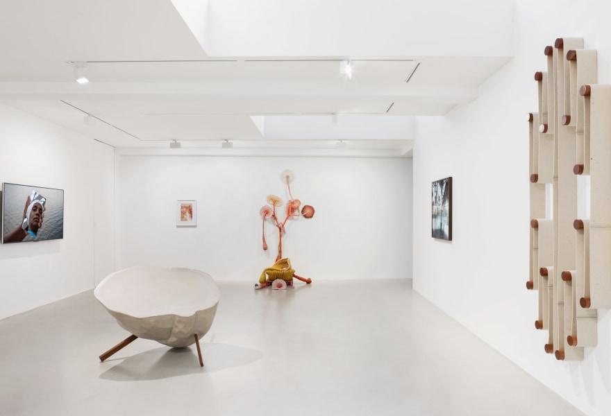 Kunst die je wilt aanraken | Uniek overzicht van hedendaagse Braziliaans kunst bij Galerie Ron Mandos