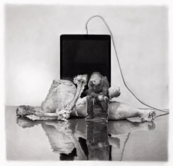 David Haines, Still Life with iPad, Cutout and Chicken Legs