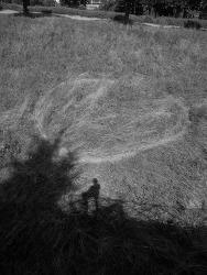 Jeroen Jongeleen, Runner above the Sea of Grass, Besançon