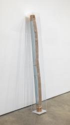 David Maljkovic, Alterity Line